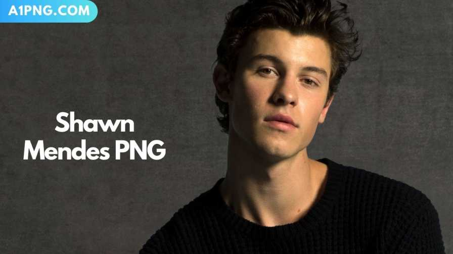 [Best 60+]» Shawn Mendes PNG, Logo, ClipArt [HD Background]