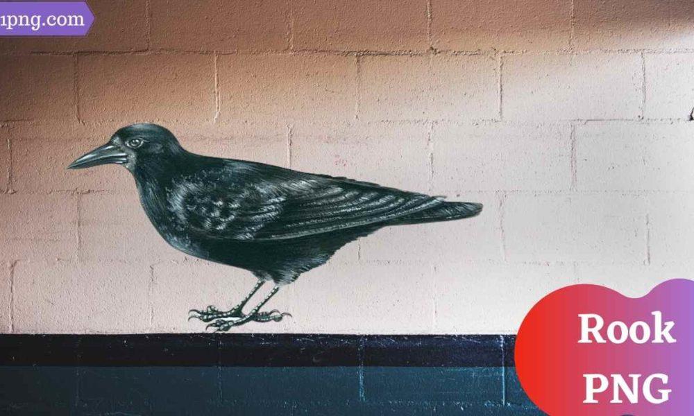[Best 74+] Rook PNG » Hd Transparent Background