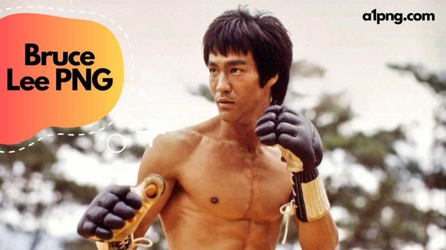 [Best 70+]» Bruce Lee PNG, ClipArt, [HD Background]